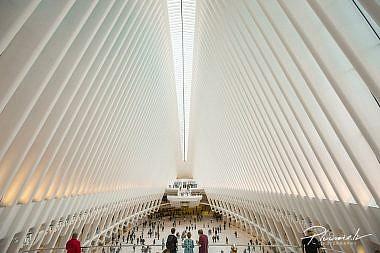 Foto Martins Plume, ASV, celojumi, New York, NYC, (8)